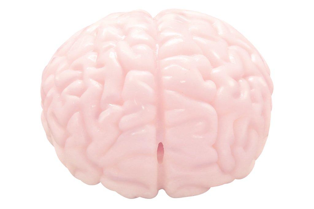 顱內高潮?腦洞大開《大腦飛機杯》腦袋是個好東西希望你也有一個...