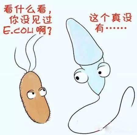 【趣聞】精子的15種死法,最後一種笑死我瞭