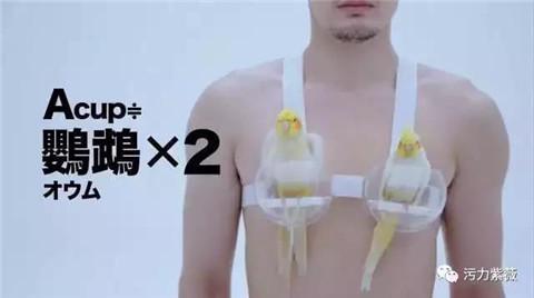 你知道可以讓你爽的胸部有多重嗎?