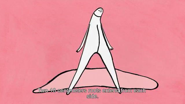 陰蒂有趣科普,女性的陰蒂不僅會硬還會飛!